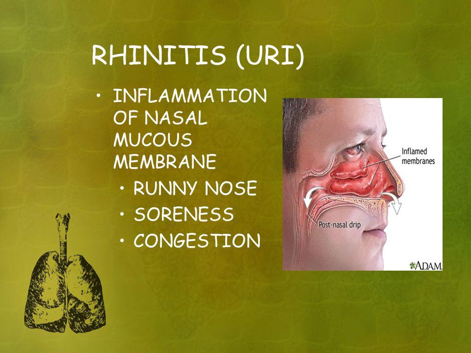 RHINITIS (URI) INFLAMMATION OF NASAL MUCOUS MEMBRANE RUNNY NOSE SORENESS CONGESTION