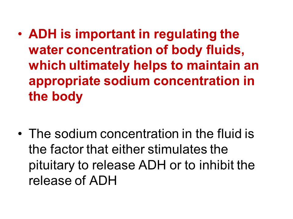 ADH is important in regulating the water concentration of body fluids, which ultimately helps to maintain an appropriate sodium concentration in the b