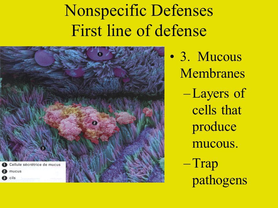 Non specific Defenses First line of defense 4.