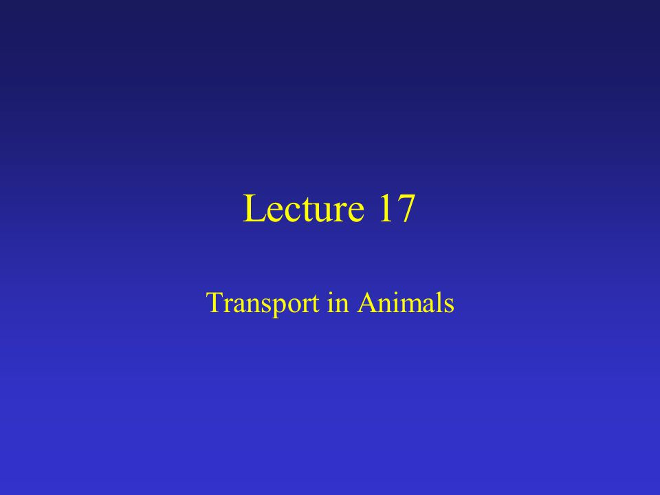 Lecture 17 Transport in Animals