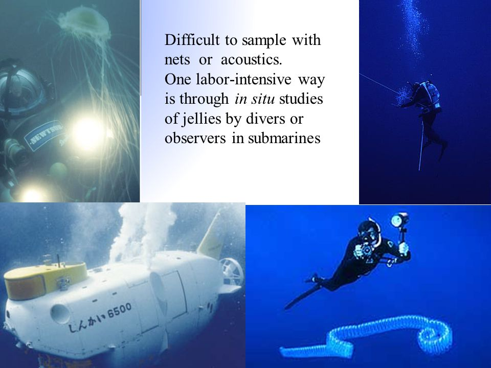 Difficult to sample with nets or acoustics. One labor-intensive way is through in situ studies of jellies by divers or observers in submarines