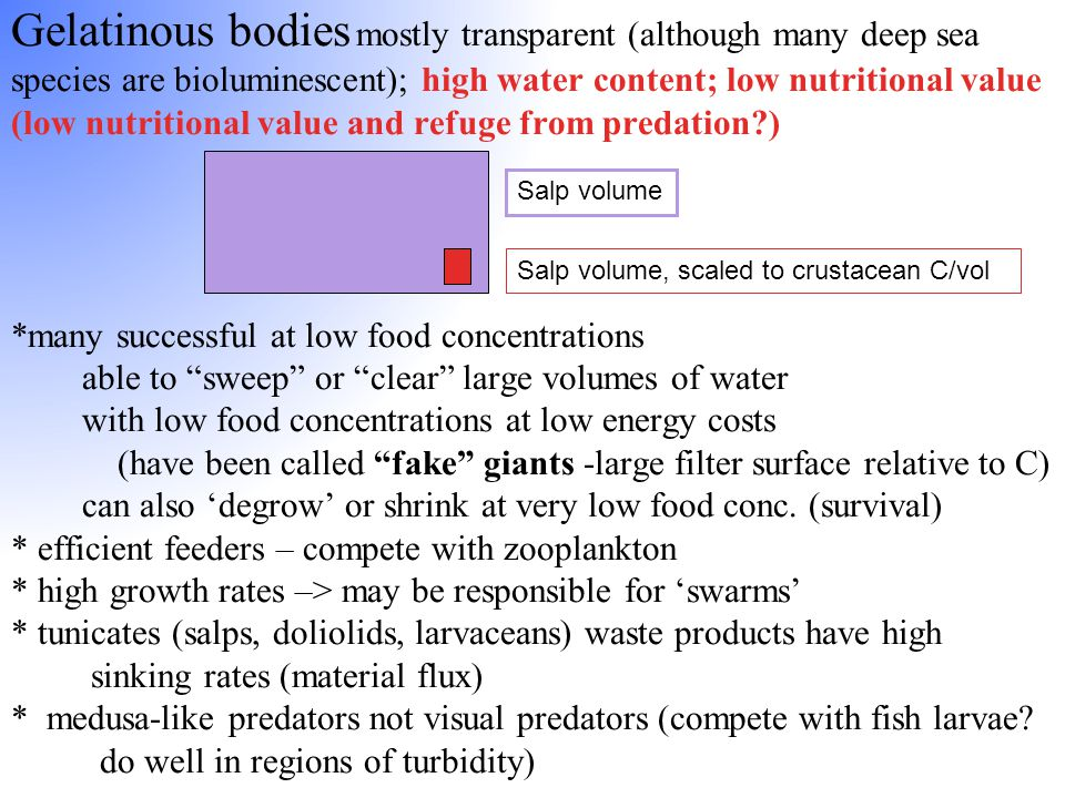 Gelatinous bodies mostly transparent (although many deep sea species are bioluminescent); high water content; low nutritional value (low nutritional v
