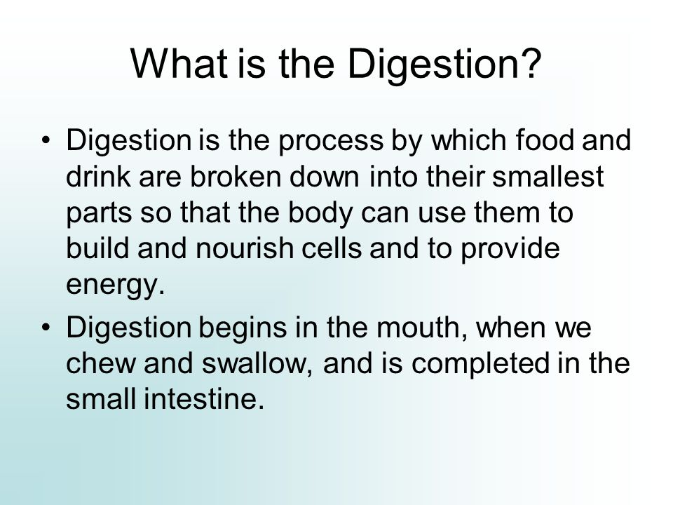 Digestive glands: Digestive System oral cavity, esophagus, stomach, small and large intestines, rectum, and anus.