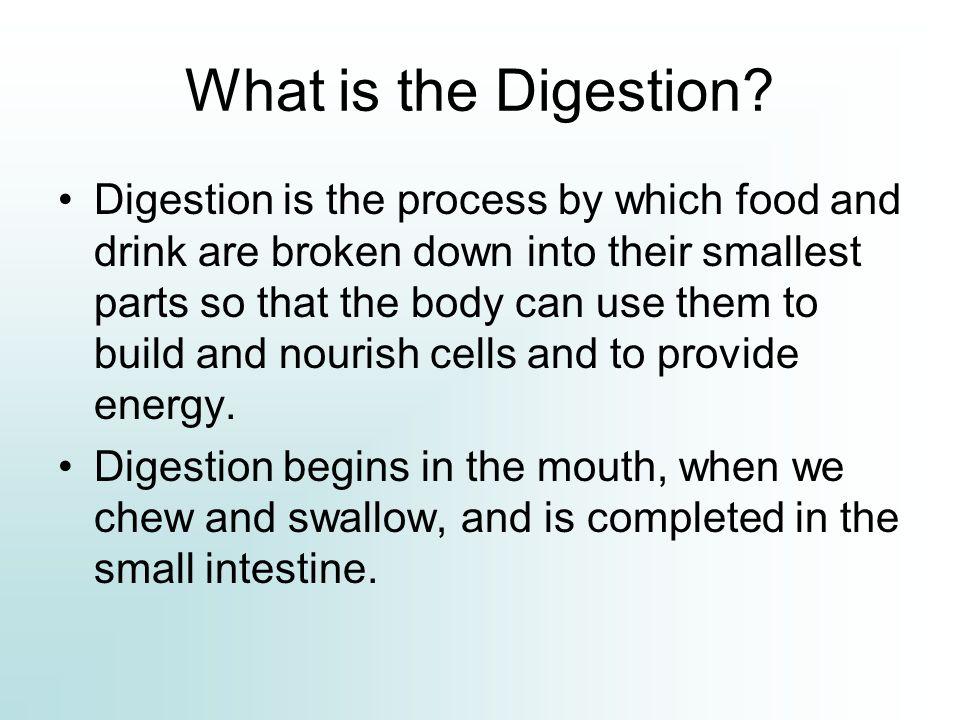3.Taste bud Figure.showing the taste cells and the taste pore.