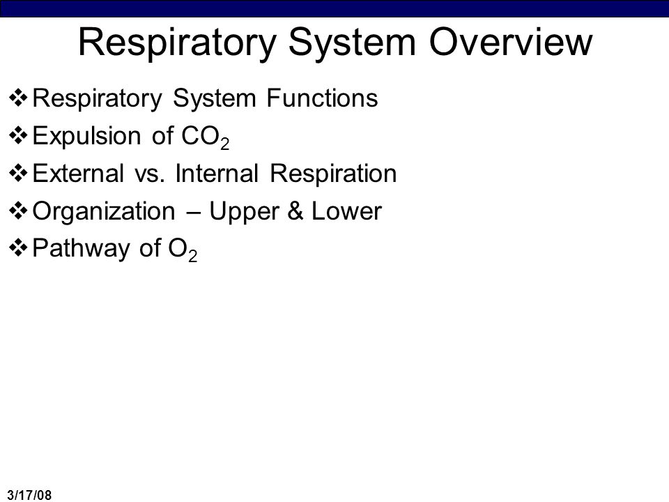 3/17/08 Respiratory System  O 2 delivery to cells is critical & the respiratory system makes it possible for O 2 from the atmosphere to enter the blood  Function ♦O 2 transport to the blood ♦CO 2 transport from the blood ♦Some role in speech (in terms of air movement)  Do we really breath out CO 2 .