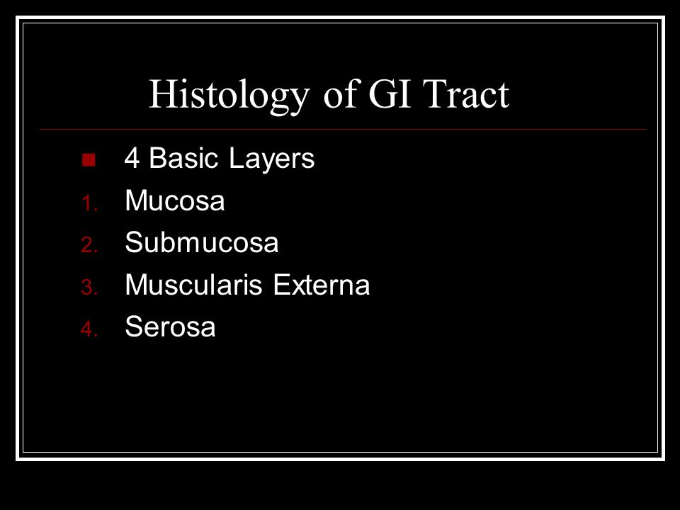 Histology of GI Tract 4 Basic Layers 1. Mucosa 2. Submucosa 3. Muscularis Externa 4. Serosa