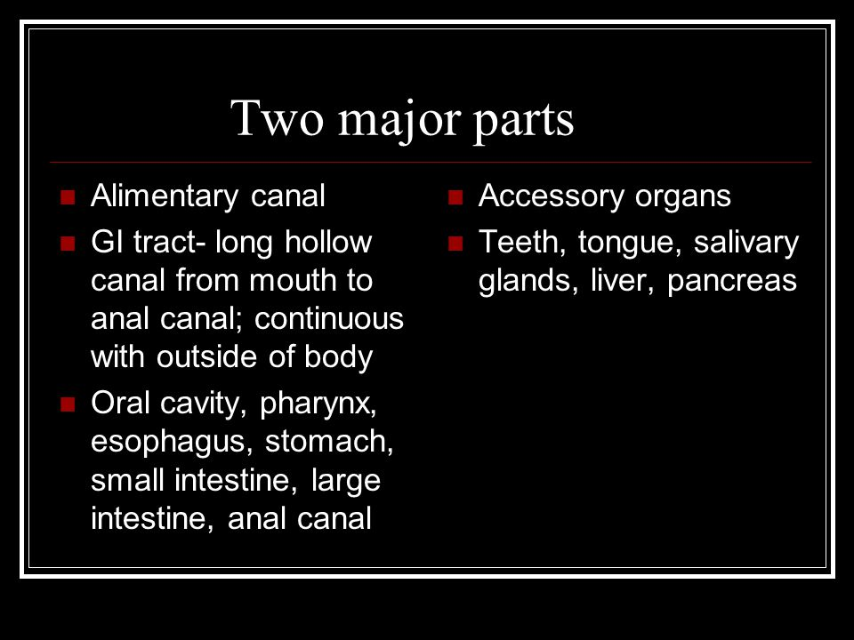 Two major parts Alimentary canal GI tract- long hollow canal from mouth to anal canal; continuous with outside of body Oral cavity, pharynx, esophagus, stomach, small intestine, large intestine, anal canal Accessory organs Teeth, tongue, salivary glands, liver, pancreas