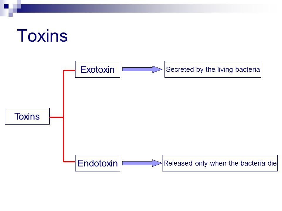 Toxins Exotoxin Endotoxin Secreted by the living bacteria Released only when the bacteria die