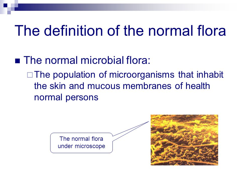 The definition of the normal flora The normal microbial flora:  The population of microorganisms that inhabit the skin and mucous membranes of health normal persons The normal flora under microscope