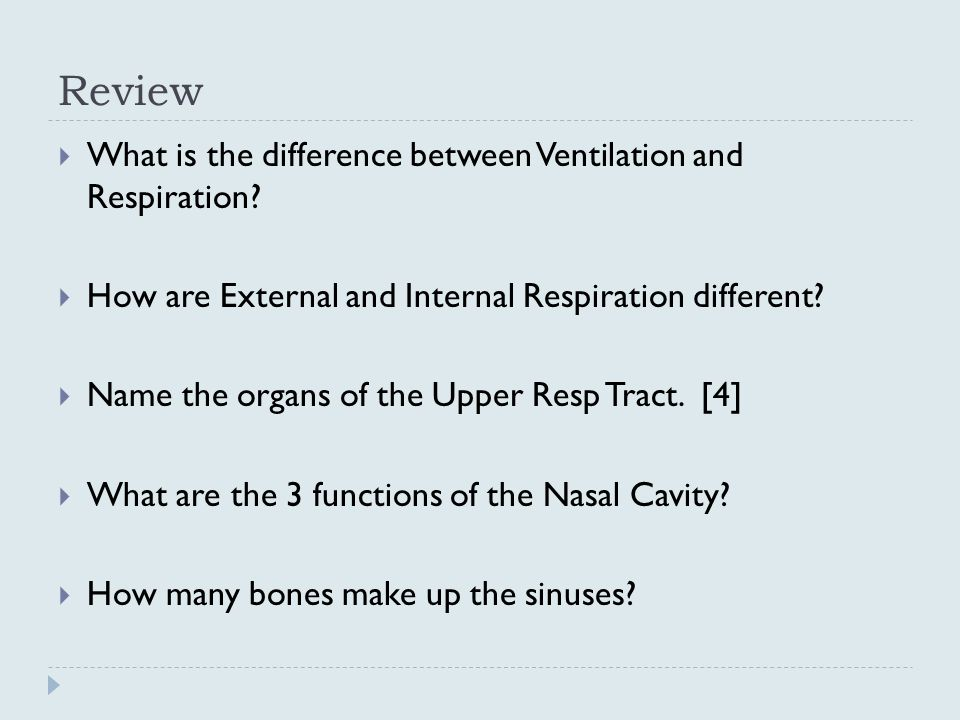 Review  What is the difference between Ventilation and Respiration.