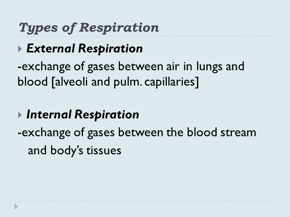 Types of Respiration  External Respiration -exchange of gases between air in lungs and blood [alveoli and pulm.
