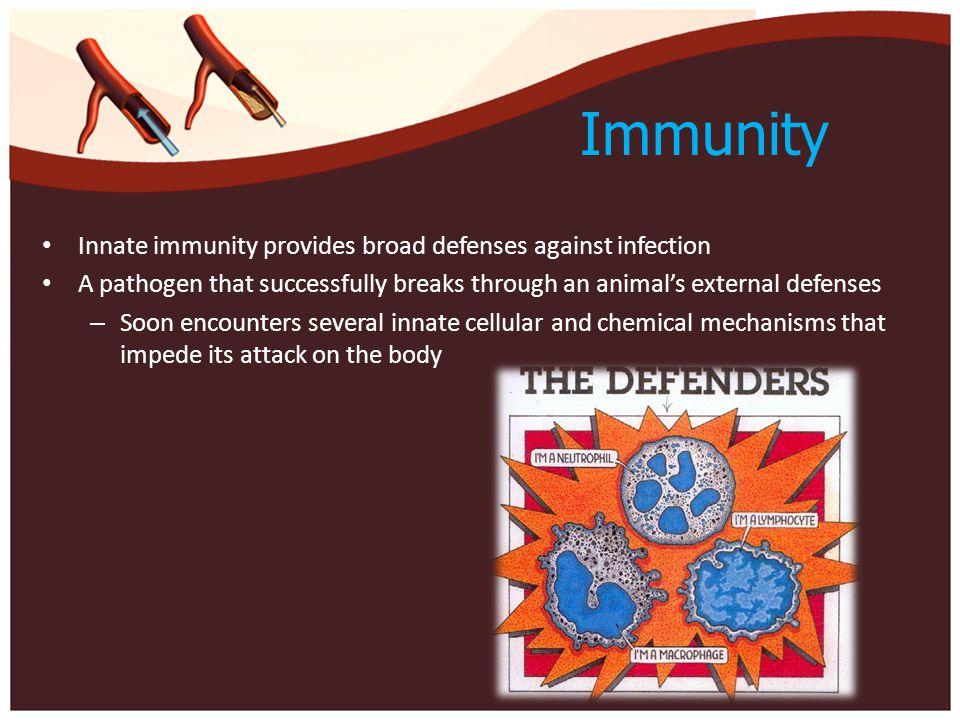 Immunity Innate immunity provides broad defenses against infection A pathogen that successfully breaks through an animal's external defenses – Soon en