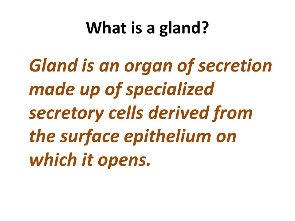 What is a gland.