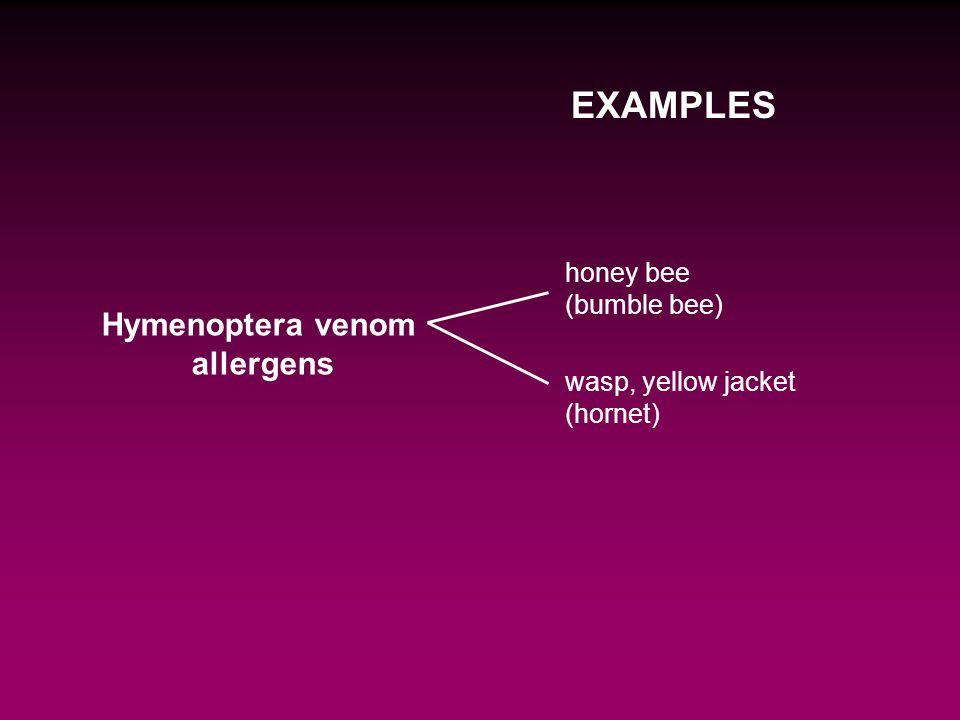 Hymenoptera venom allergens EXAMPLES honey bee (bumble bee) wasp, yellow jacket (hornet)