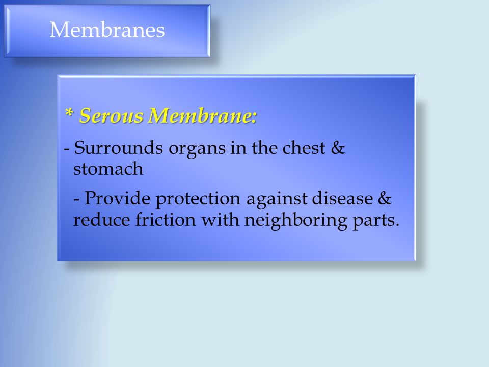 Membranes * Serous Membrane: - Surrounds organs in the chest & stomach - Provide protection against disease & reduce friction with neighboring parts.
