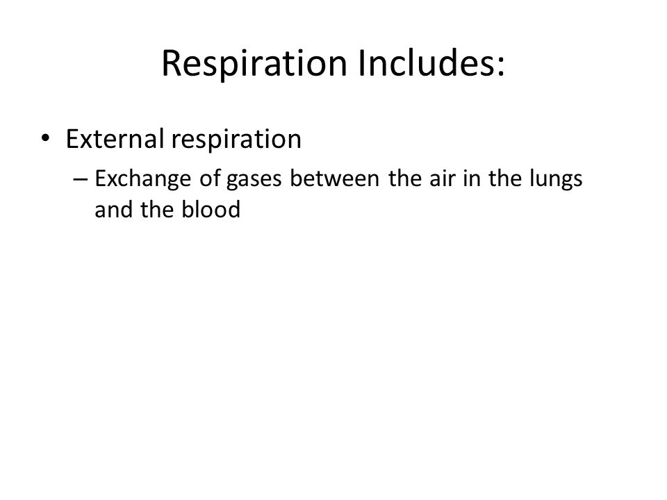 Respiration Includes: External respiration – Exchange of gases between the air in the lungs and the blood