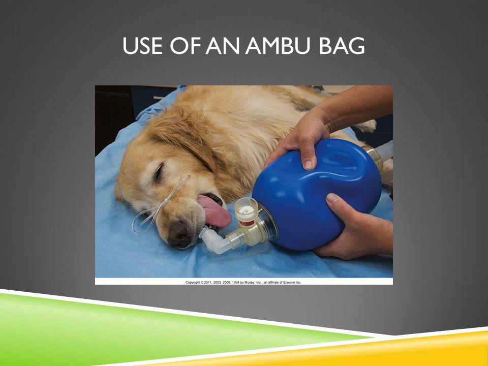 USE OF AN AMBU BAG