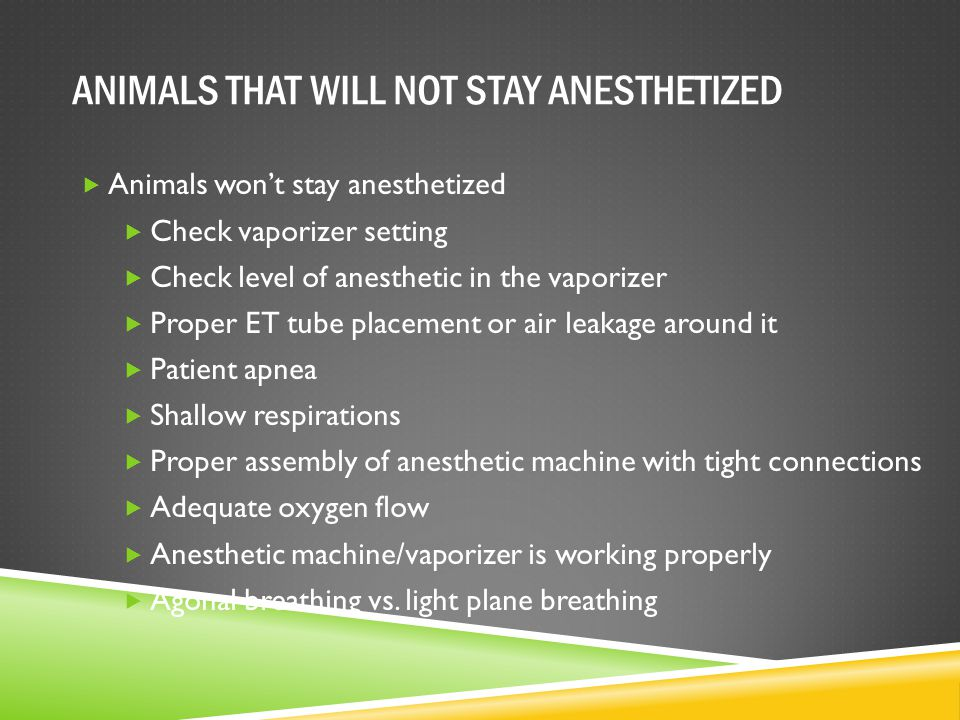 ANIMALS THAT WILL NOT STAY ANESTHETIZED  Animals won't stay anesthetized  Check vaporizer setting  Check level of anesthetic in the vaporizer  Pro