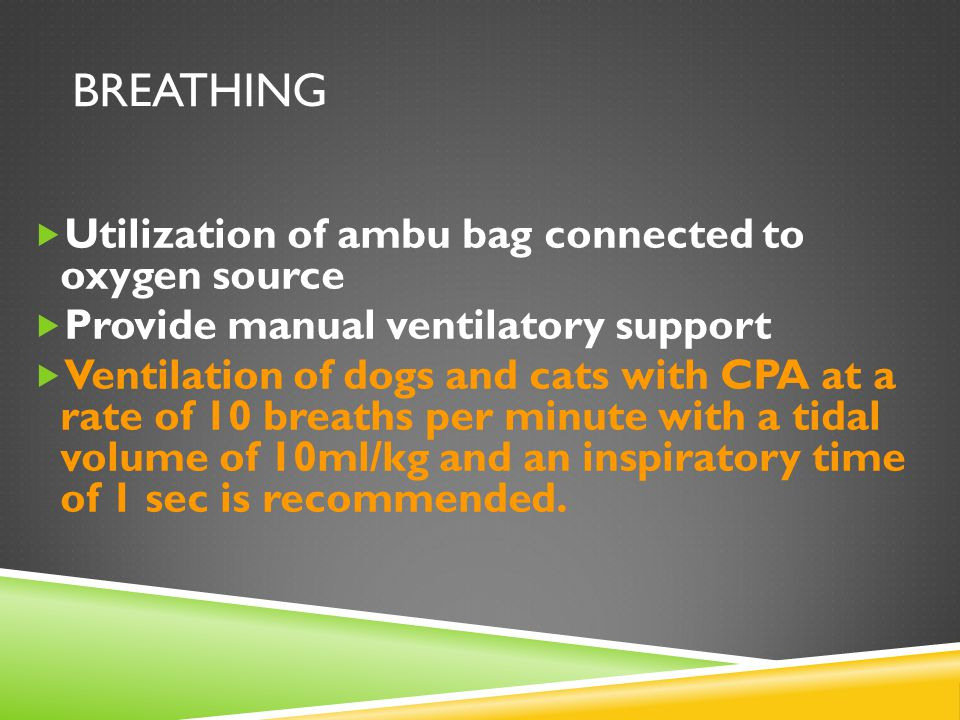 BREATHING  Utilization of ambu bag connected to oxygen source  Provide manual ventilatory support  Ventilation of dogs and cats with CPA at a rate