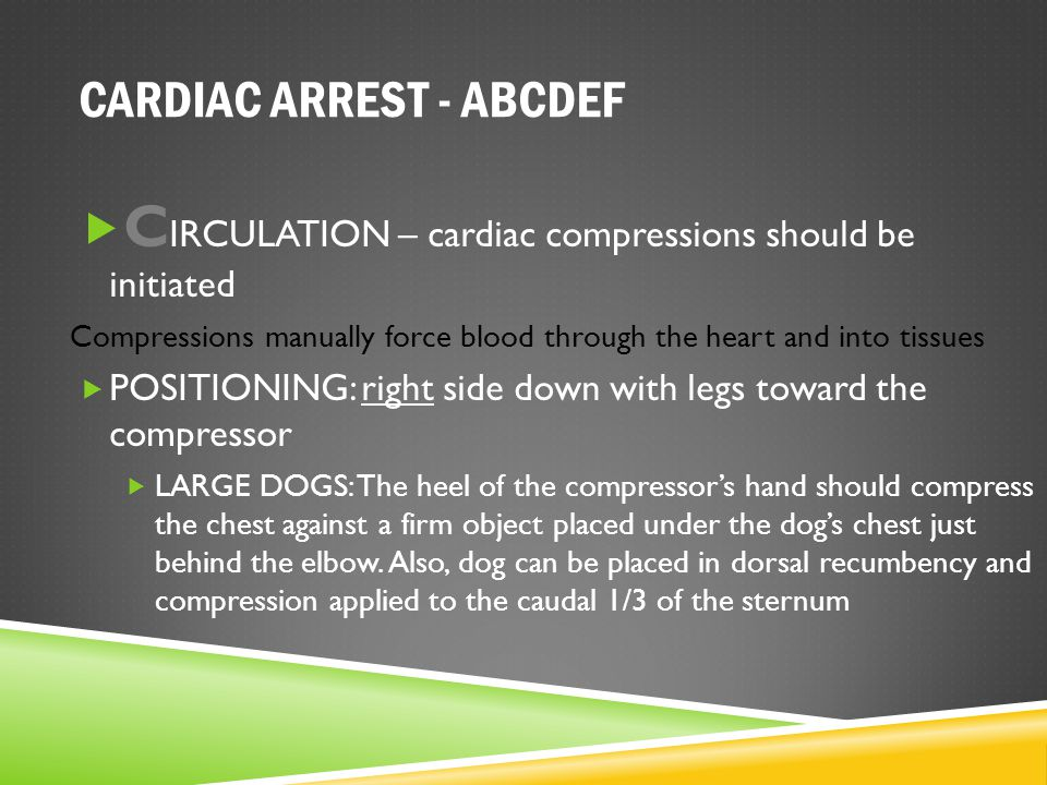 CARDIAC ARREST - ABCDEF  C IRCULATION – cardiac compressions should be initiated Compressions manually force blood through the heart and into tissues
