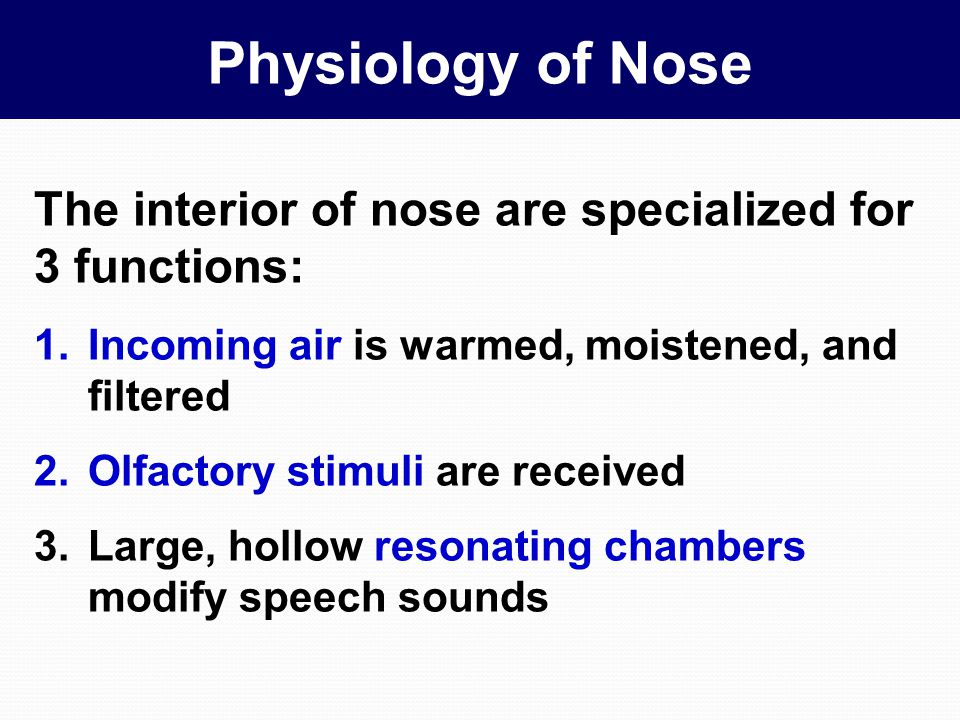….Olfactory threshold & Discrimination Determination of differences in intensity of any given odor is poor Concentration of odor-producing substance must be changed by about 30% before a difference can be detected Comparable visual discrimination threshold is a 1% change in light intensity