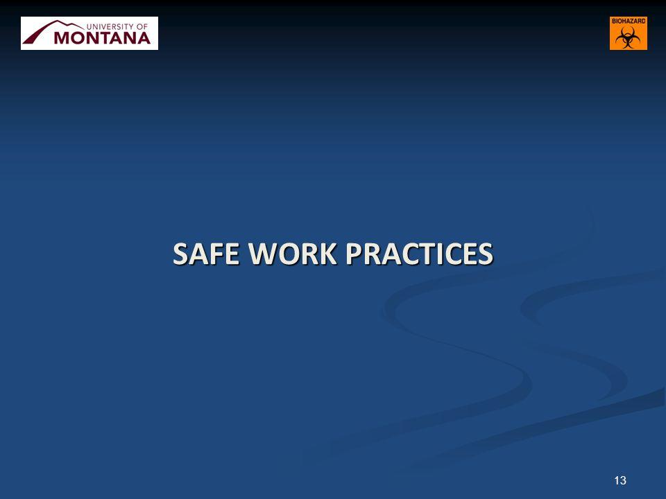 SAFE WORK PRACTICES 13