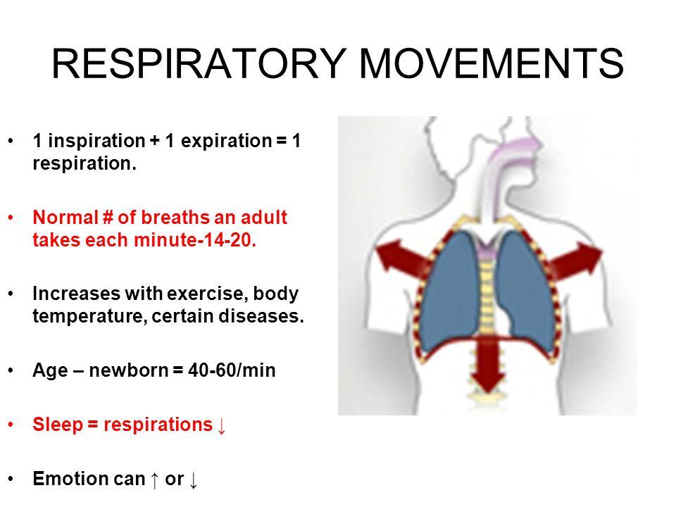 RESPIRATORY MOVEMENTS 1 inspiration + 1 expiration = 1 respiration.