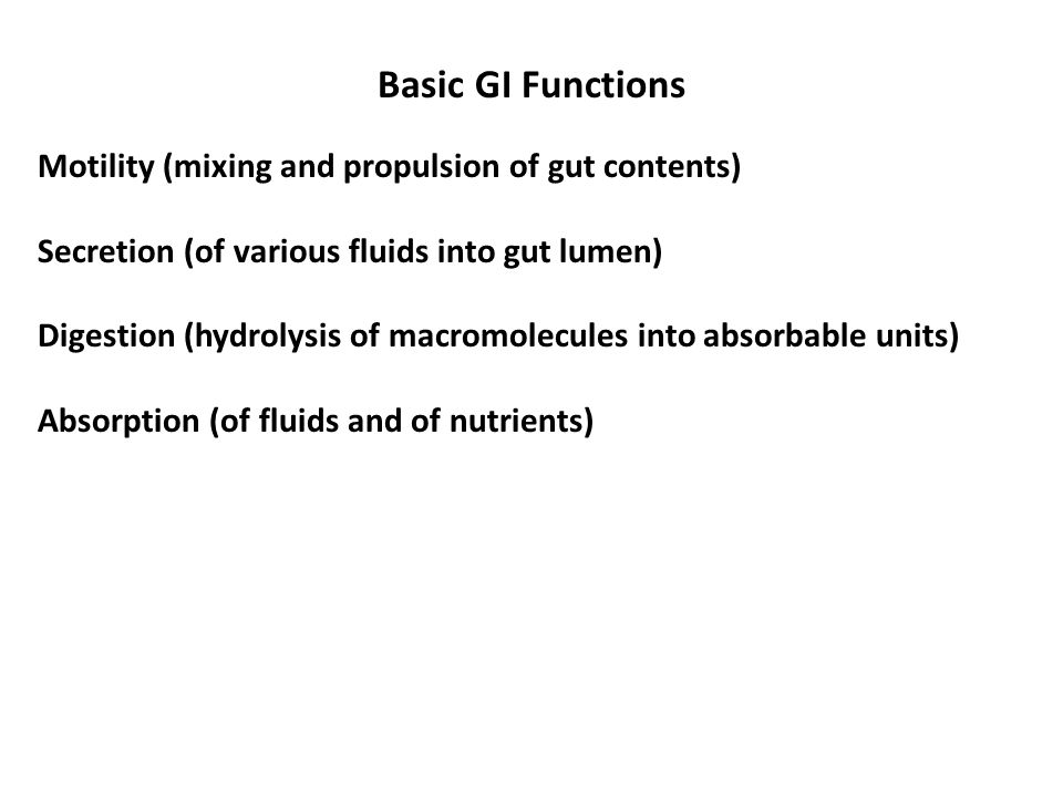 Basic GI Functions Motility (mixing and propulsion of gut contents) Secretion (of various fluids into gut lumen) Digestion (hydrolysis of macromolecules into absorbable units) Absorption (of fluids and of nutrients)