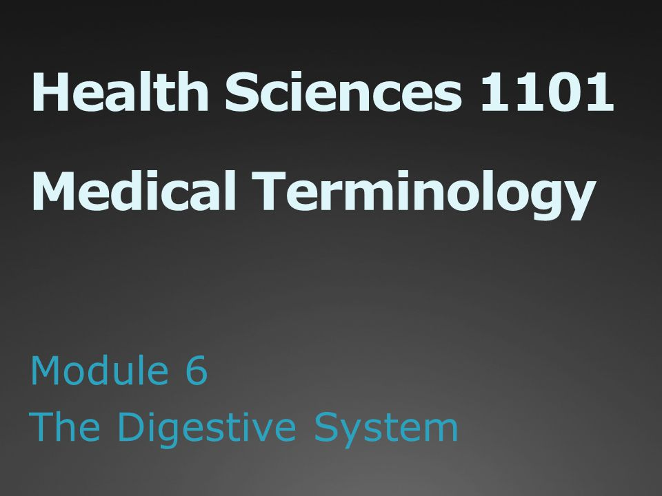 Health Sciences 1101 Medical Terminology Module 6 The Digestive System