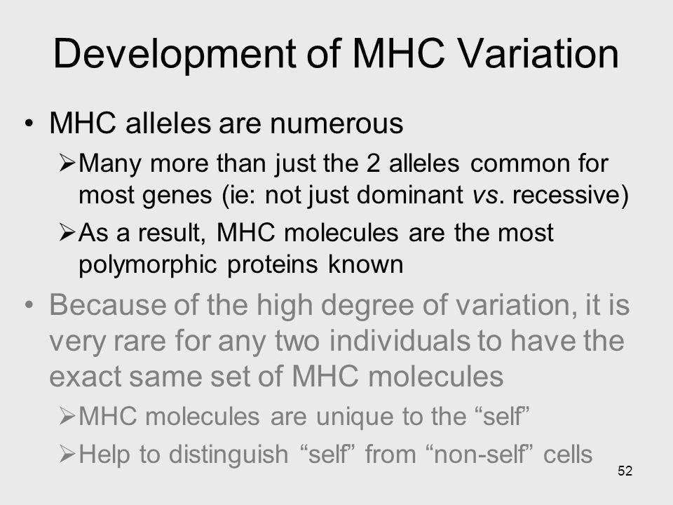 52 Development of MHC Variation MHC alleles are numerous  Many more than just the 2 alleles common for most genes (ie: not just dominant vs. recessiv