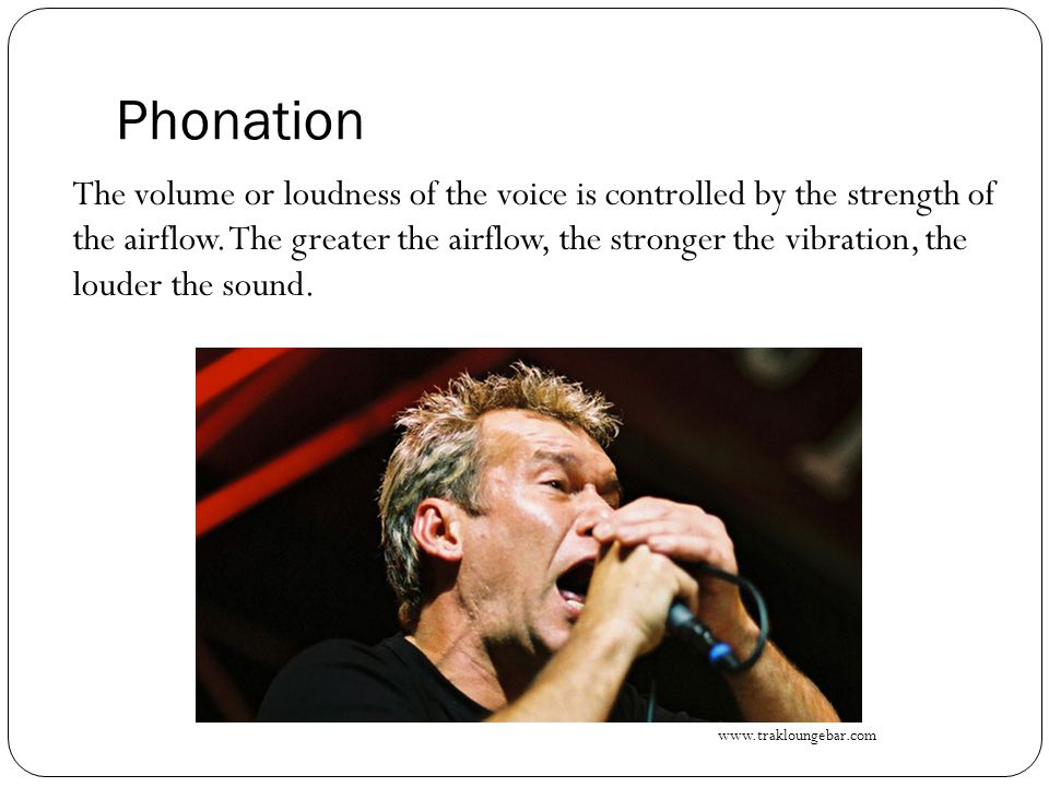 Phonation The volume or loudness of the voice is controlled by the strength of the airflow. The greater the airflow, the stronger the vibration, the l