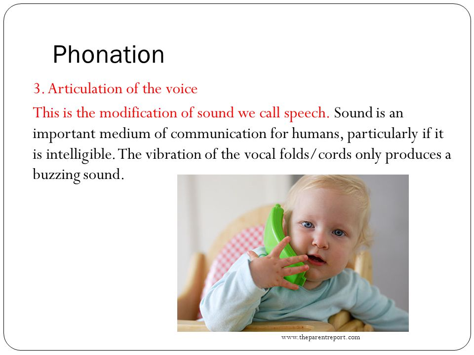 Phonation 3. Articulation of the voice This is the modification of sound we call speech. Sound is an important medium of communication for humans, par