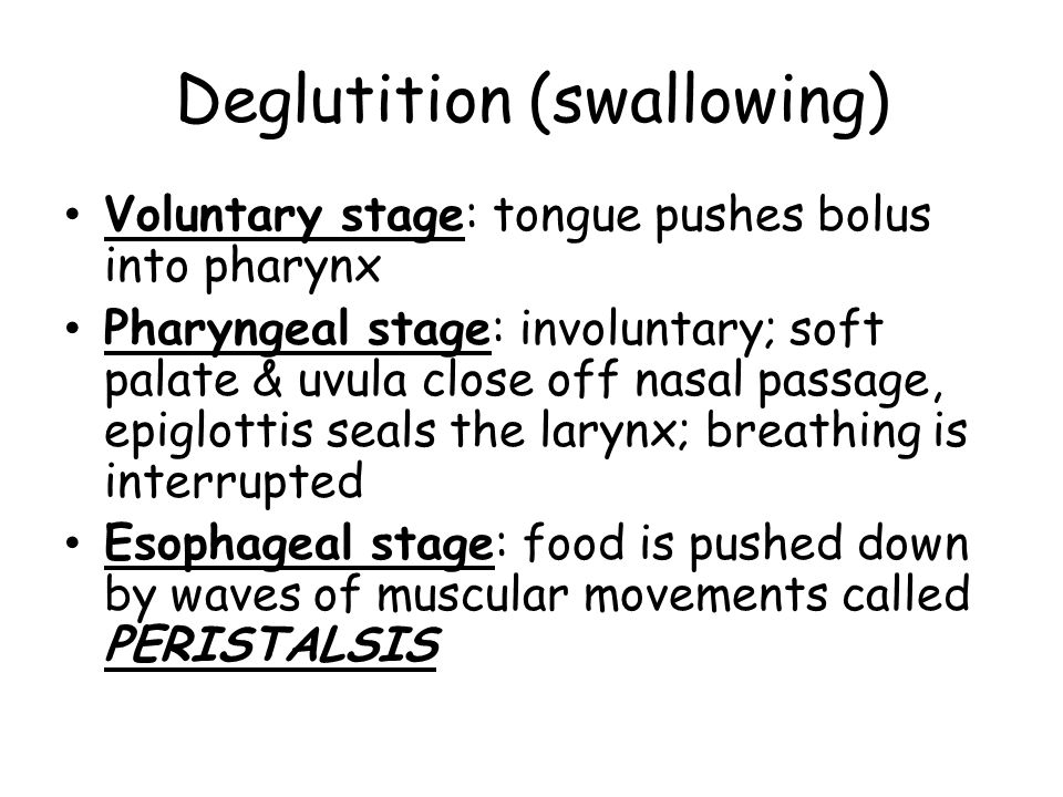 Deglutition (swallowing) Voluntary stage: tongue pushes bolus into pharynx Pharyngeal stage: involuntary; soft palate & uvula close off nasal passage, epiglottis seals the larynx; breathing is interrupted Esophageal stage: food is pushed down by waves of muscular movements called PERISTALSIS
