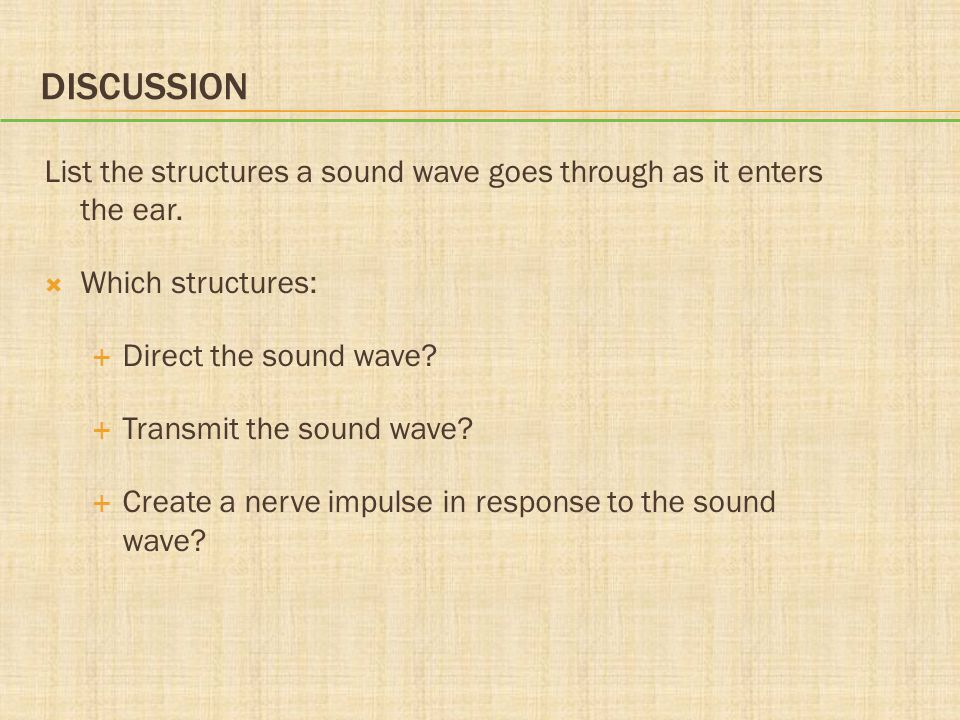 DISCUSSION List the structures a sound wave goes through as it enters the ear.  Which structures:  Direct the sound wave?  Transmit the sound wave?