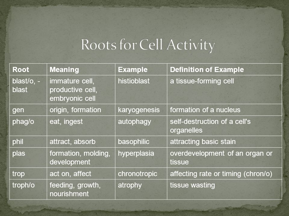 RootMeaningExampleDefinition of Example blast/o, - blast immature cell, productive cell, embryonic cell histioblasta tissue-forming cell genorigin, formationkaryogenesisformation of a nucleus phag/oeat, ingestautophagyself-destruction of a cell s organelles philattract, absorbbasophilicattracting basic stain plasformation, molding, development hyperplasiaoverdevelopment of an organ or tissue tropact on, affectchronotropicaffecting rate or timing (chron/o) troph/ofeeding, growth, nourishment atrophytissue wasting