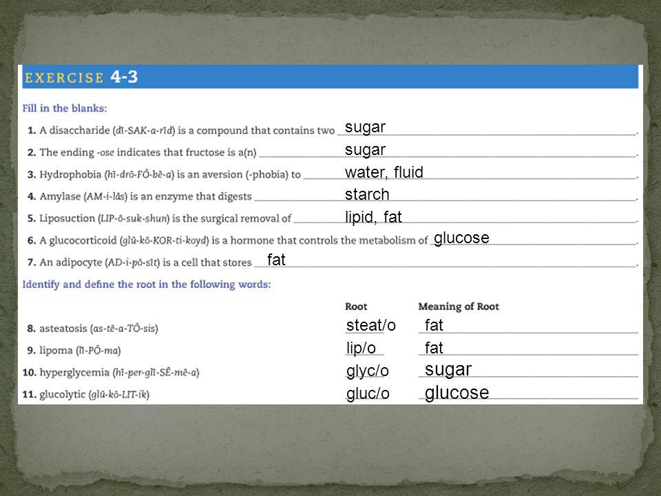 sugar water, fluid starch lipid, fat glucose fat steat/ofat lip/ofat glyc/o sugar gluc/o glucose