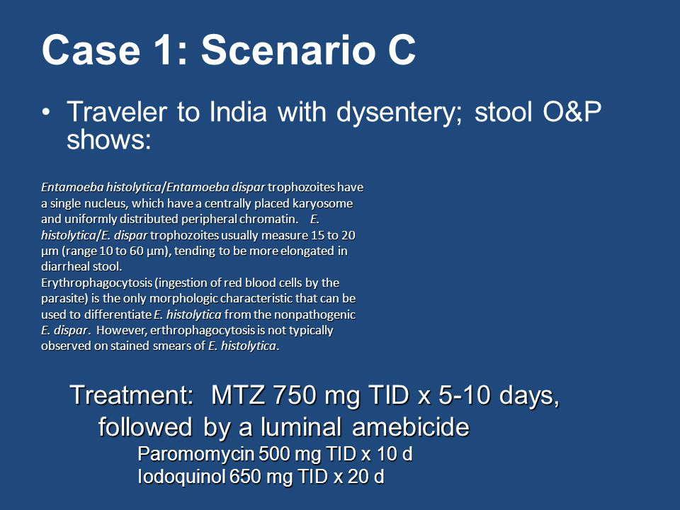 Case 1: Scenario C Traveler to India with dysentery; stool O&P shows: Entamoeba histolytica/Entamoeba dispar trophozoites have a single nucleus, which have a centrally placed karyosome and uniformly distributed peripheral chromatin.