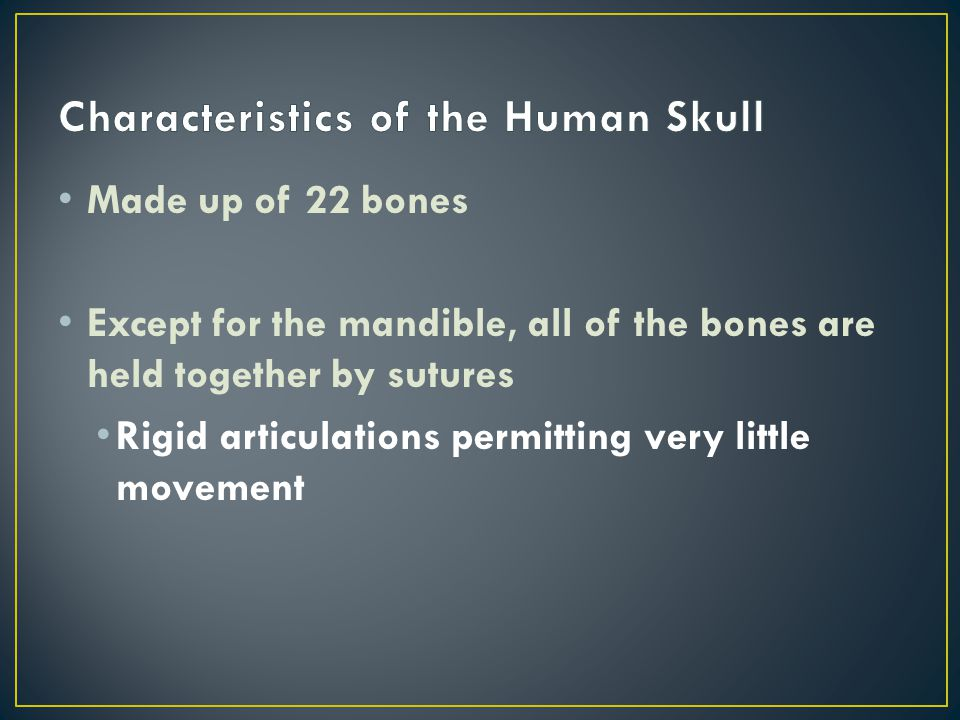 Made up of 22 bones Except for the mandible, all of the bones are held together by sutures Rigid articulations permitting very little movement