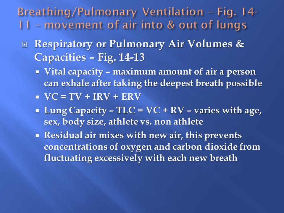  Respiratory or Pulmonary Air Volumes & Capacities – Fig.