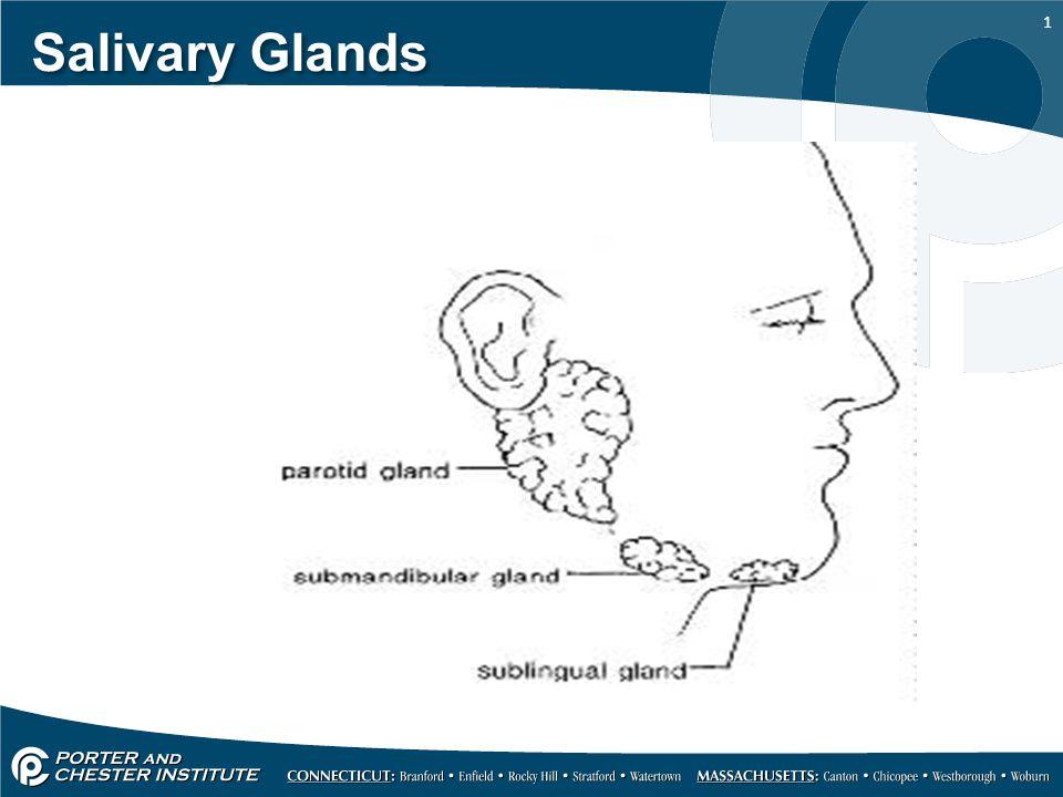 1 Salivary Glands