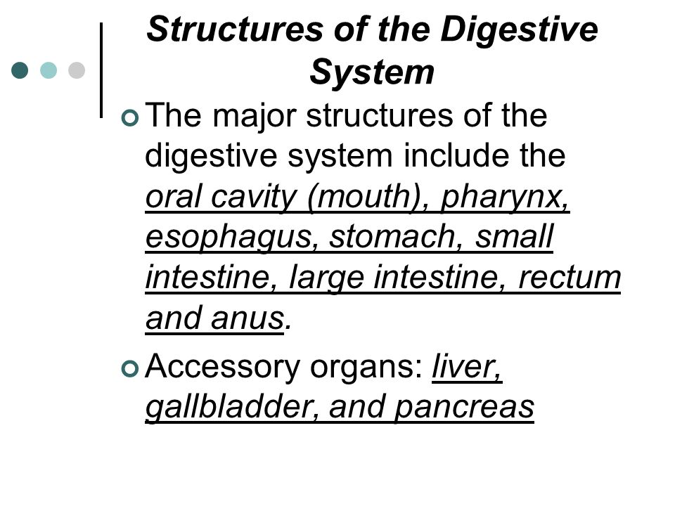 Diverticulum – a pouch or sac occurring in the lining or wall of the intestines.