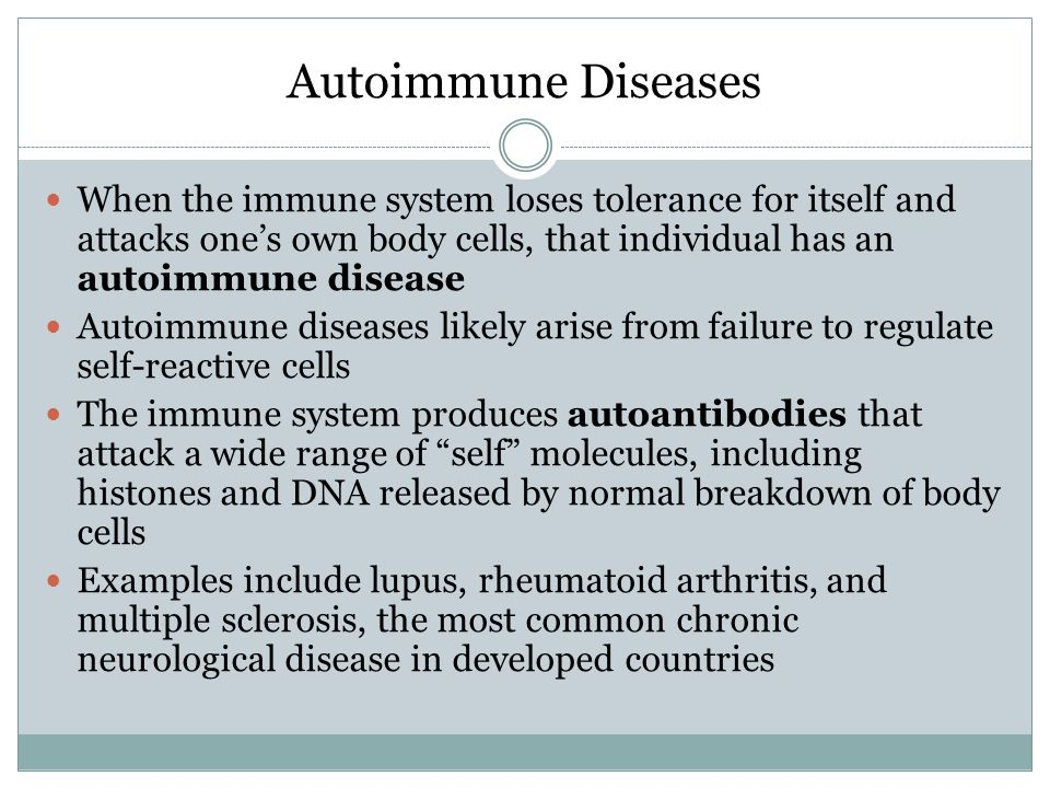 Autoimmune Diseases When the immune system loses tolerance for itself and attacks one's own body cells, that individual has an autoimmune disease Autoimmune diseases likely arise from failure to regulate self-reactive cells The immune system produces autoantibodies that attack a wide range of self molecules, including histones and DNA released by normal breakdown of body cells Examples include lupus, rheumatoid arthritis, and multiple sclerosis, the most common chronic neurological disease in developed countries