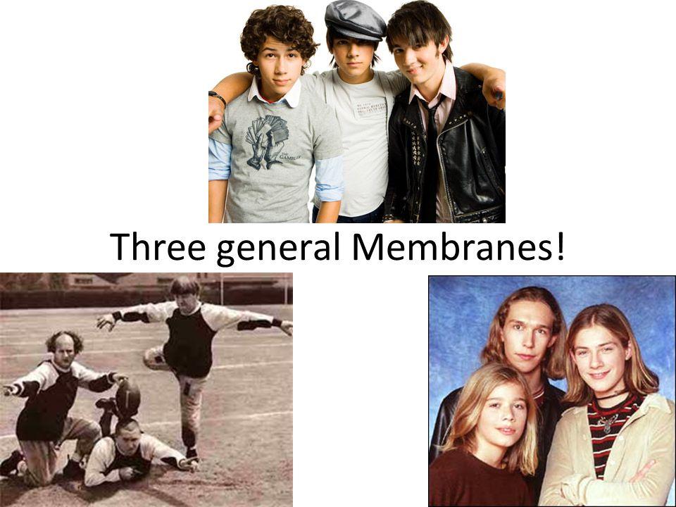 Three general Membranes!