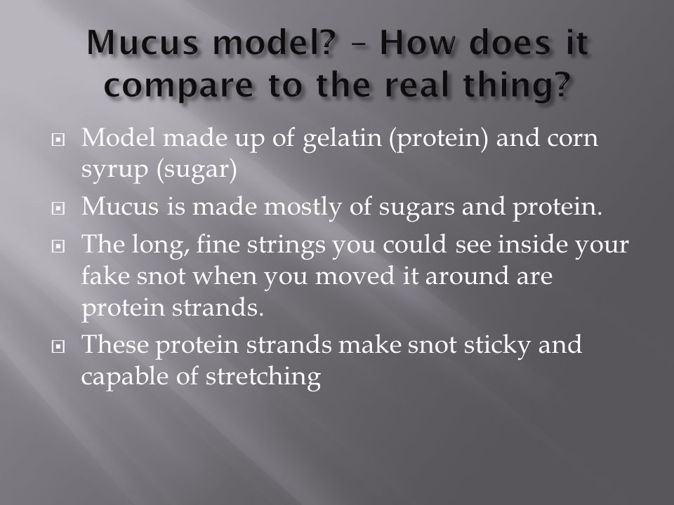  Model made up of gelatin (protein) and corn syrup (sugar)  Mucus is made mostly of sugars and protein.  The long, fine strings you could see insid