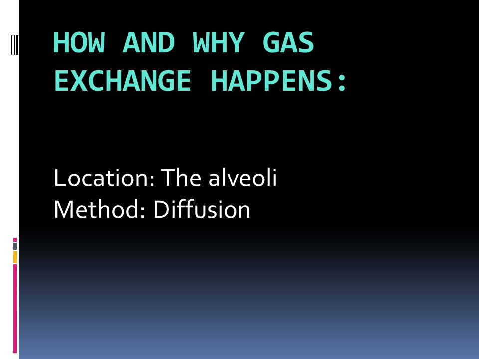 HOW AND WHY GAS EXCHANGE HAPPENS: Location: The alveoli Method: Diffusion