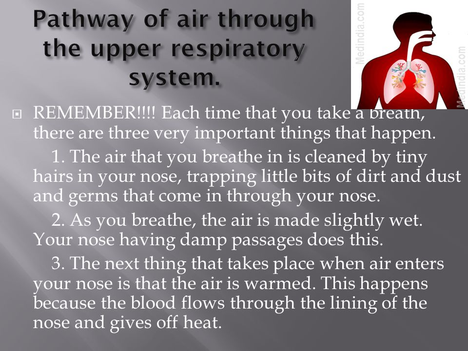  REMEMBER!!!! Each time that you take a breath, there are three very important things that happen. 1. The air that you breathe in is cleaned by tiny