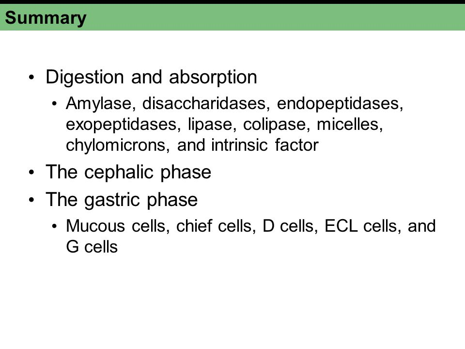 Summary Digestion and absorption Amylase, disaccharidases, endopeptidases, exopeptidases, lipase, colipase, micelles, chylomicrons, and intrinsic fact