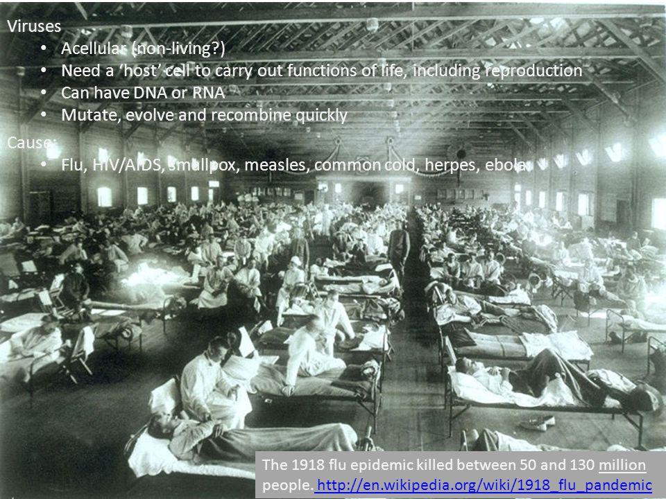 The 1918 flu epidemic killed between 50 and 130 million people. http://en.wikipedia.org/wiki/1918_flu_pandemic http://en.wikipedia.org/wiki/1918_flu_p