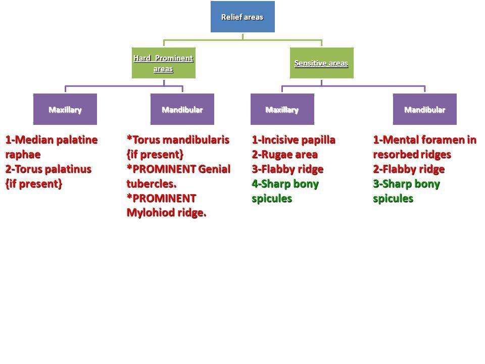 Relief areas Hard Prominent areas MaxillaryMandibular Sensitive areas Maxillary Mandibular 1-Median palatine raphae 2-Torus palatinus {if present} *To
