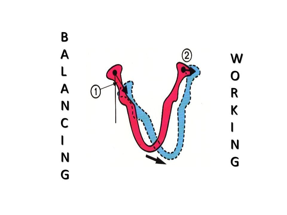 WORKING BALANCING